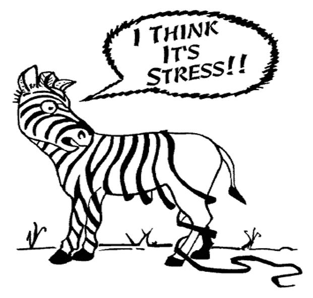 STRATEGIES TO MANAGE STRESS - STRESS IS GOOD!!!